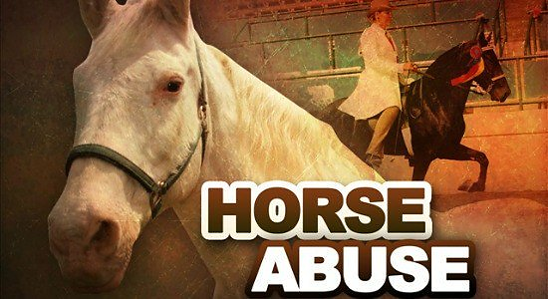 Horse Protection Act, Horse Soring