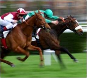 Horseracing Integrity and Safety Act