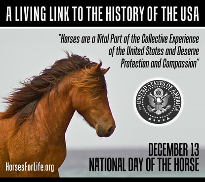 National Day of the Horse, Honor The Horse